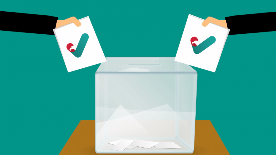 Wybory - Normalny Kraj